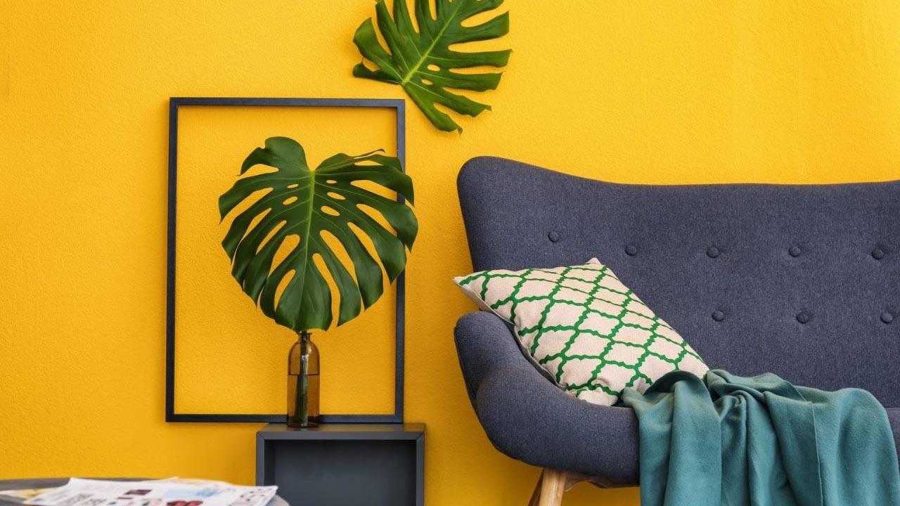 Shopping Bela Vista promove exposição e sorteios para os clientes decorarem suas casas